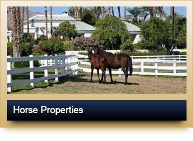 Luxury Horse Properties
